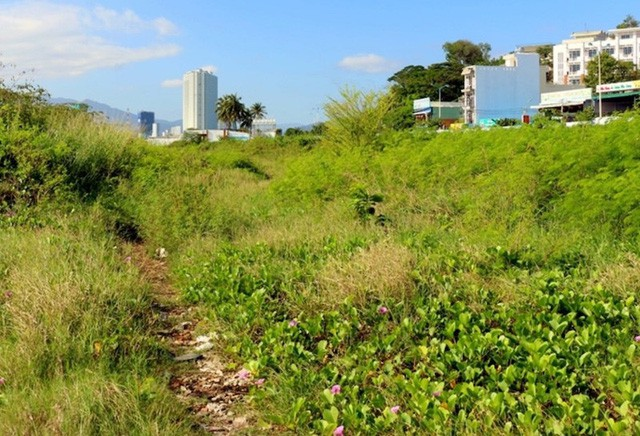 Khánh Hòa thu hồi đất dự án 'lấp biển' 30 triệu USD để làm công viên - Ảnh 2.