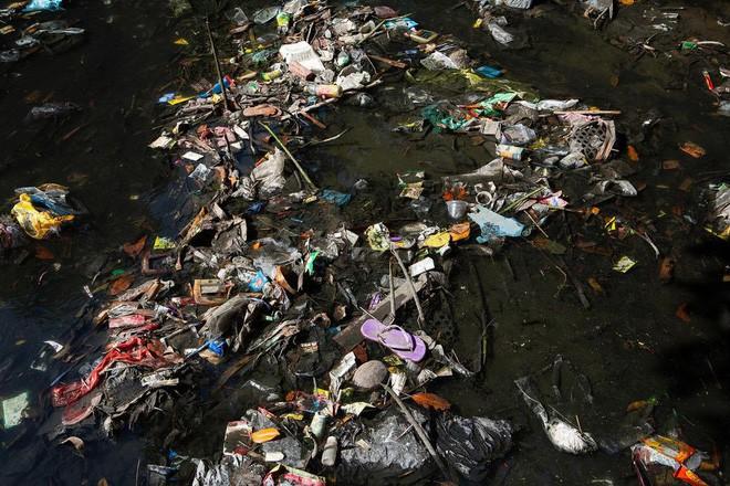 Dự án biến nhựa thành đơn vị tiền tệ, vừa giải quyết được vấn nạn rác lại tạo ra nguồn sống cho vô số người nghèo - Ảnh 4.