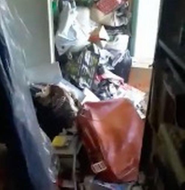 Cụ bà sống giữa căn nhà ngập ngụa 12 tấn rác suốt 30 năm, phải mất tới một tuần để dọn sạch - Ảnh 4.