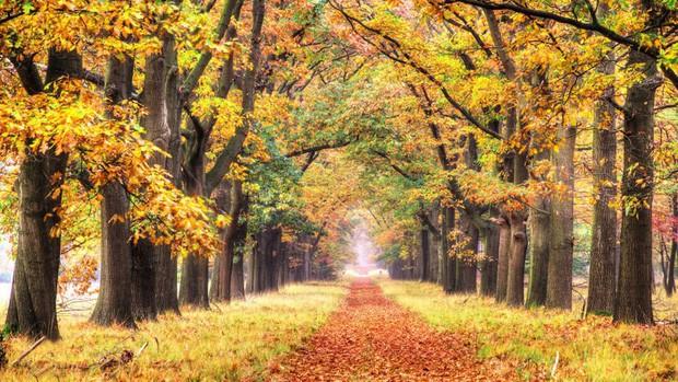Những vùng đất đẹp như thiên đường ở châu Âu ít người biết tới - Ảnh 12.