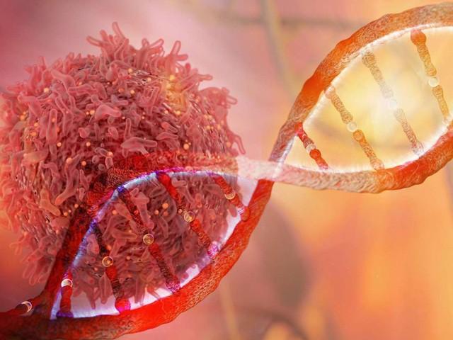 Người mang những gen này phải cẩn thận vì có nguy cơ cao bị kích hoạt tế bào ung thư - Ảnh 2.