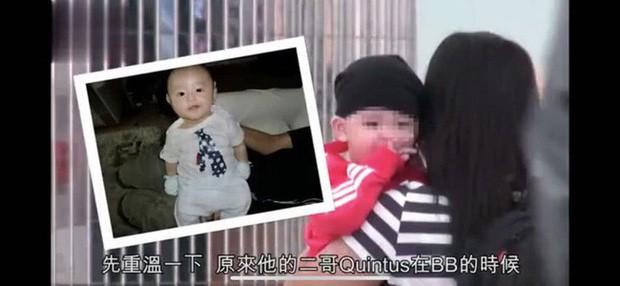 Cận cảnh diện mạo con trai thứ 3 của Trương Bá Chi, cư dân mạng phát sốt vì vẻ ngoài đáng yêu - Ảnh 4.