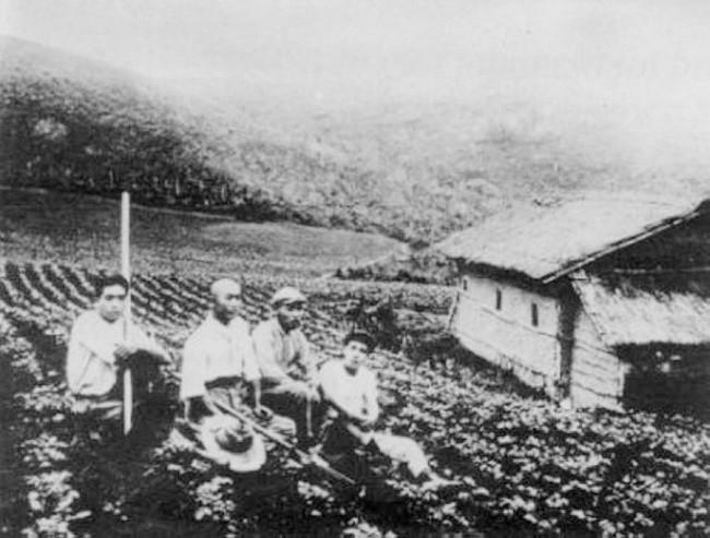 Chuyện người Nhật di cư đến Brazil: Từng sống khốn khổ và bị đối xử không khác nô lệ nhưng mạnh mẽ vươn lên tìm chỗ đứng nơi đất khách - Ảnh 3.