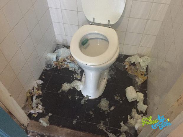 Vào đời với bằng thạc sĩ mà vẫn thất nghiệp, anh chàng đi dọn vệ sinh dạo kiếm 7 tỷ mỗi năm - Ảnh 12.