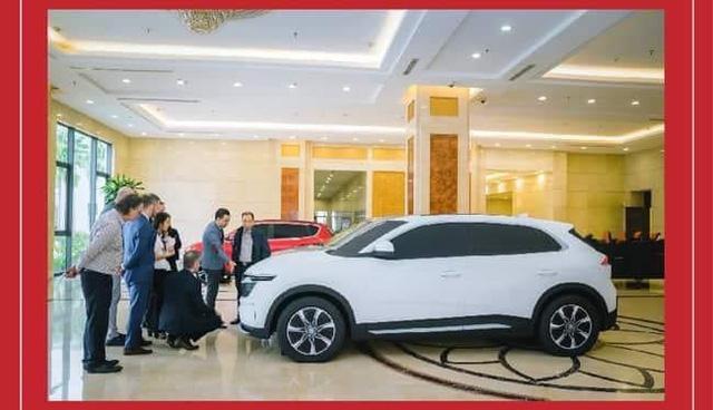 Người Việt xôn xao bàn tán về hai mẫu xe mới của VinFast: Mong chờ một mức giá rẻ - Ảnh 1.