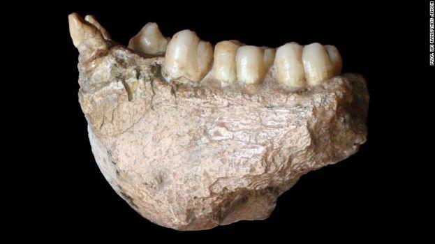 Hóa thạch tiết lộ 'King Kong' có họ hàng với đười ươi - Ảnh 1.