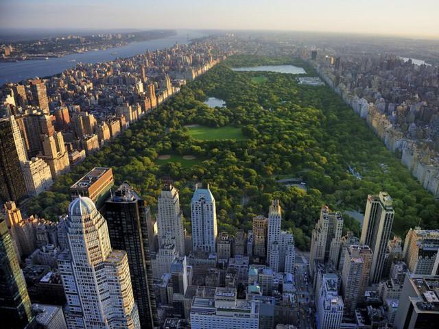1 triệu USD mua được nhà bao nhiêu m2 tại các thành phố lớn của Mỹ? - Ảnh 7.