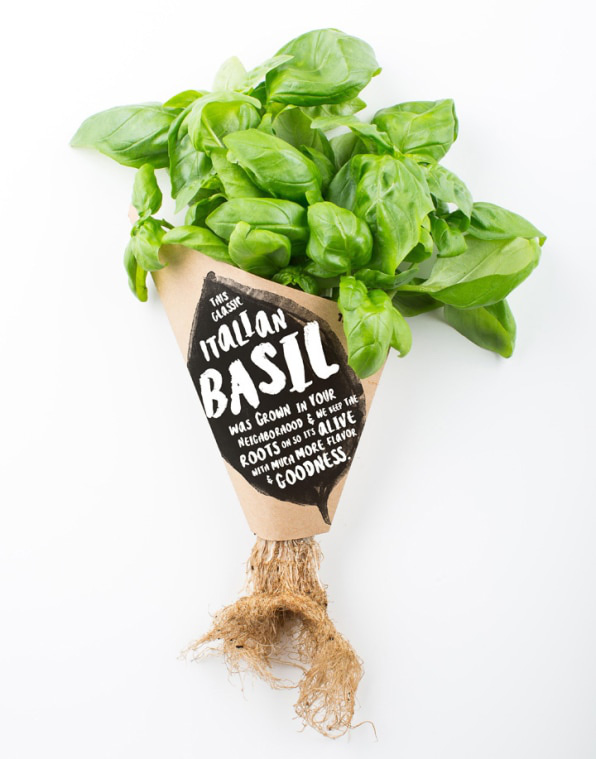 Mỹ: Công nghệ cho phép chuỗi bán rau trồng ngay tại cửa hàng - Ảnh 3.