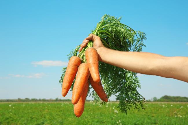 Những thực phẩm giúp giải độc gan bạn cần biết - Ảnh 8.