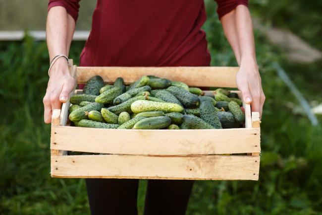 Những thực phẩm giúp giải độc gan bạn cần biết - Ảnh 9.