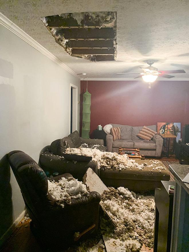Những trường hợp thảm họa nhà trọ nhìn mà tức: Trăn rủ nhau quấn quýt trên trần nhà, nấm mọc chi chít khắp nơi và hàng rào có như không - Ảnh 11.