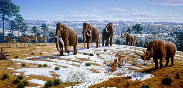 8 sự kiện đại tuyệt chủng đã suýt xóa sổ sự sống ra khỏi Trái Đất: Liệu tiếp theo có phải con người? - Ảnh 6.