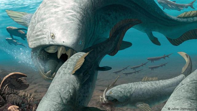 8 sự kiện đại tuyệt chủng đã suýt xóa sổ sự sống ra khỏi Trái Đất: Liệu tiếp theo có phải con người? - Ảnh 8.