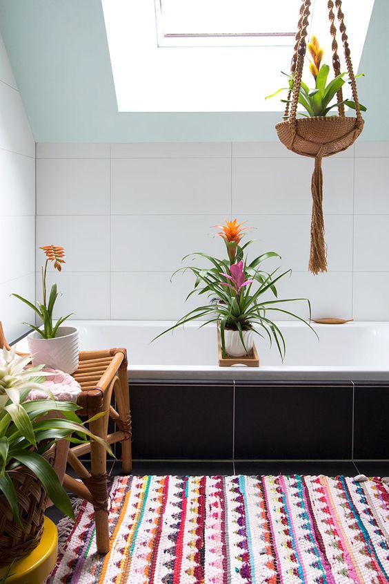10 loại cây cảnh tốt nhất trồng trong phòng tắm để lấy thêm màu xanh và lọc không khí cho cả nhà - Ảnh 4.