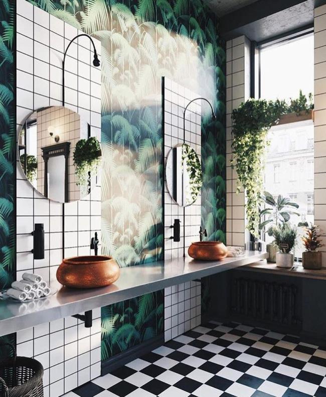 10 loại cây cảnh tốt nhất trồng trong phòng tắm để lấy thêm màu xanh và lọc không khí cho cả nhà - Ảnh 5.
