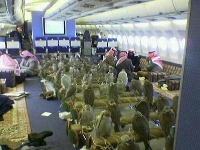 Chơi ngông khét tiếng như thái tử Ả Rập: Chỉ 1 bức hình cũng thể hiện độ giàu có không tưởng - Ảnh 1.