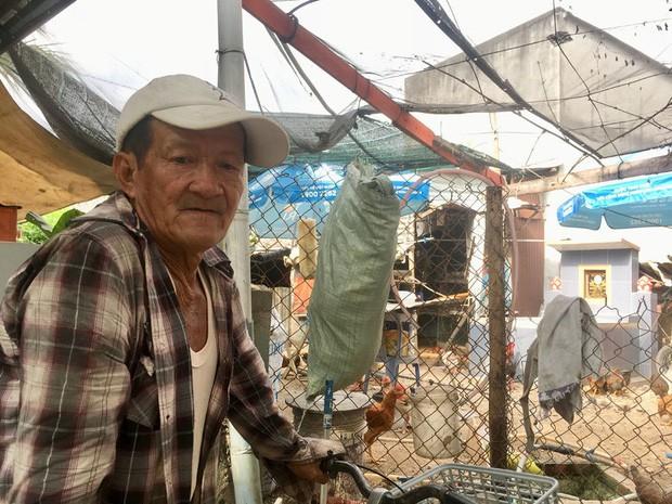 Gia đình Sài Gòn nuôi gà trên 10 ngôi mộ người thân trước cửa nhà - Ảnh 3.