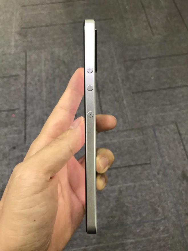 Đây là smartphone do TikTok làm ra, nhìn đi nhìn lại hao hao iPhone 5 thế nhỉ? - Ảnh 3.