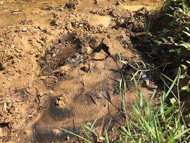Cận cảnh bùn thải nghi nhiễm dầu tại cửa súc xả bể chứa sông Đà - Ảnh 5.