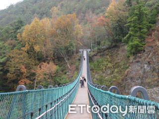 Bé trai 2 tuổi mất mạng khi rơi từ trên cầu treo cao gần 80 mét - Ảnh 2.