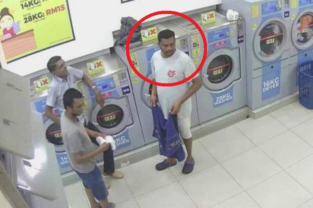 Giết mèo mang thai bằng máy sấy, người đàn ông Malaysia phải đi tù 34 tháng, nộp phạt 224 triệu đồng - Ảnh 1.