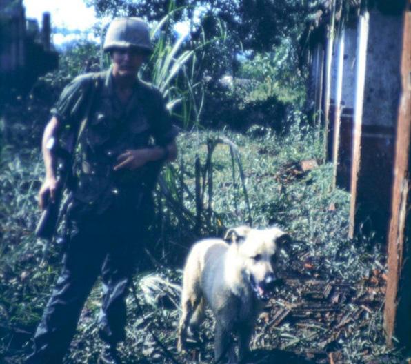 Những chú chó nghiệp vụ đã bị Quân đội Mỹ vắt chanh bỏ vỏ như thế nào? - ảnh 4