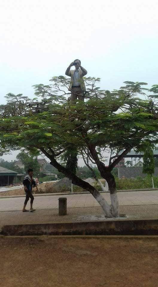Chất chơi như thầy giáo trường người ta, leo hẳn lên cây để chụp ảnh cho học sinh, dân mạng hài hước ví von: Superman giữa đời thực - Ảnh 2.