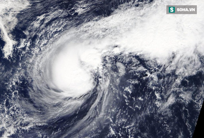 Thông tin mới nhất về cơn bão số 6: Cách Trường Sa 110km, giật cấp 15 - Ảnh 1.
