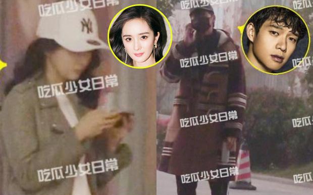 Dương Mịch bị nghi lộ giấy khám mang thai với tình trẻ - ảnh 1