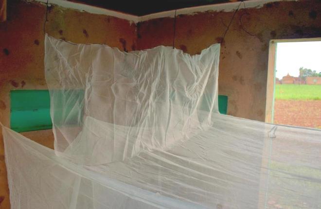 Các nhà khoa học phát triển thành công loại màn vừa an toàn với người, vừa tiêu diệt muỗi cực hiệu quả - Ảnh 2.