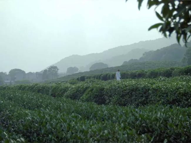 Yêu thích cuộc sống lãng mạn, cặp vợ chồng trẻ tạo không gian xanh mát giữa đồi núi mênh mông - Ảnh 1.