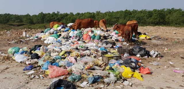 Kinh hoàng những bãi rác khổng lồ nằm ngay trên đê chống lũ - Ảnh 7.