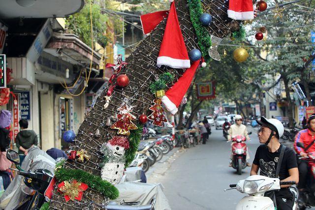 Hà Nội xuất hiện nhiều cây thông siêu to khổng lồ đón Noel 2019 - Ảnh 14.