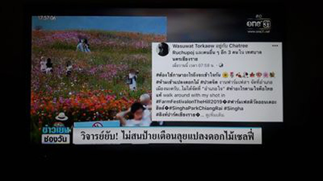 Khách du lịch cố tình dẫm đạp lên cánh đồng hoa xinh đẹp để sống ảo bất chấp biển cấm khắp nơi khiến dân mạng Thái Lan phẫn nộ - Ảnh 4.
