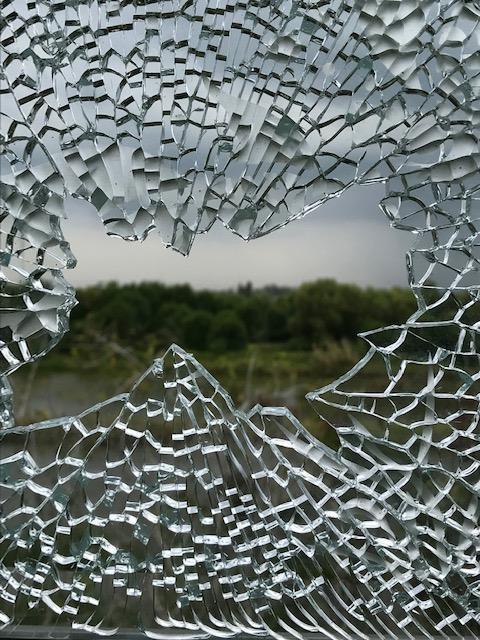 Biệt thự đại gia Cà Mau bị nã đạn: Công an mời 3 người bắn chim - Ảnh 1.