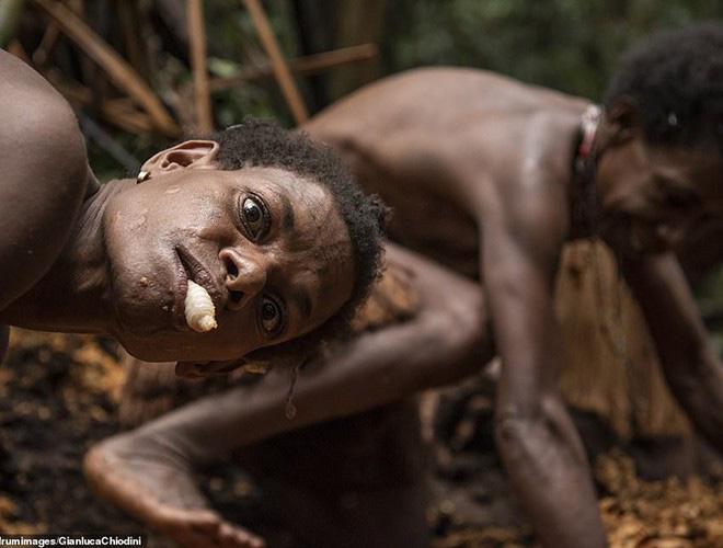 Hình ảnh hiếm hoi về người Korowai - bộ lạc mà thế giới suýt không biết đang tồn tại - Ảnh 15.