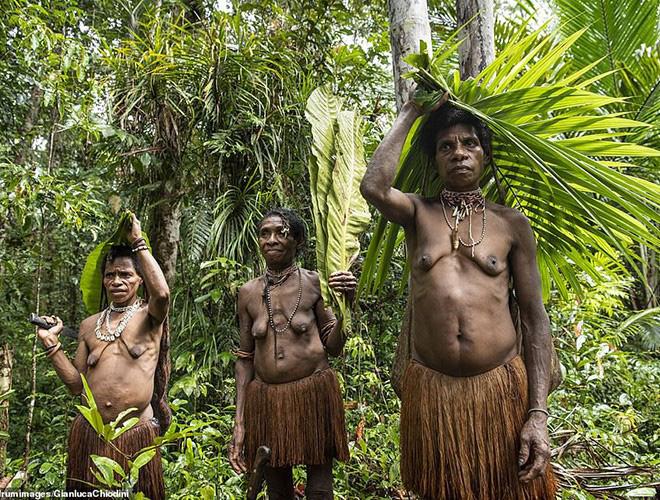 Hình ảnh hiếm hoi về người Korowai - bộ lạc mà thế giới suýt không biết đang tồn tại - Ảnh 4.