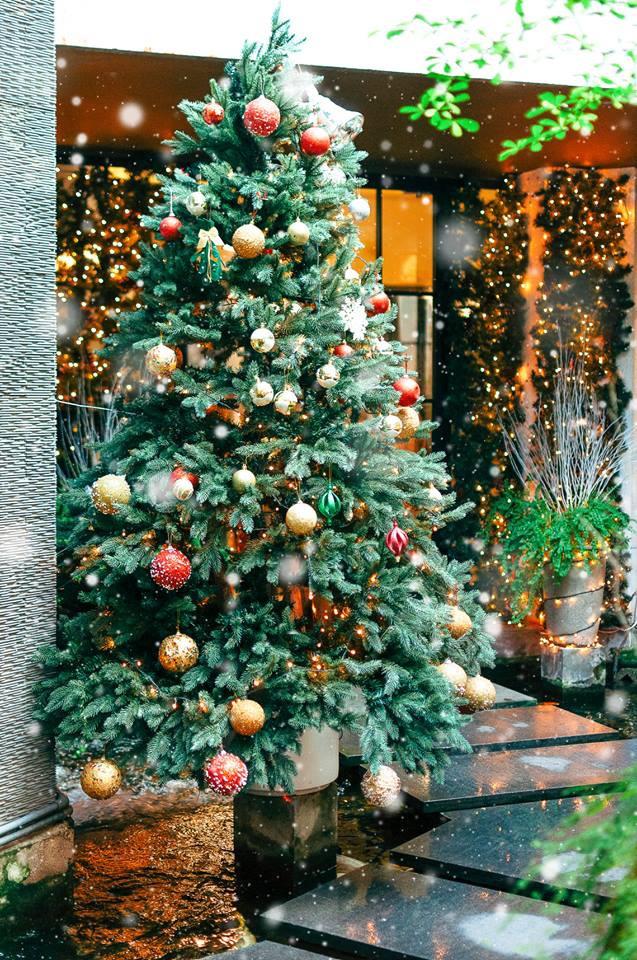 Những điểm lý tưởng đón Giáng Sinh, Noel tại Hà Nội và TP HCM - Ảnh 22.