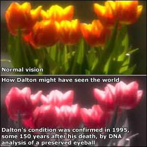 Bệnh mù màu có phải là một siêu năng lực đi kèm với sự đánh đổi? - Ảnh 4.