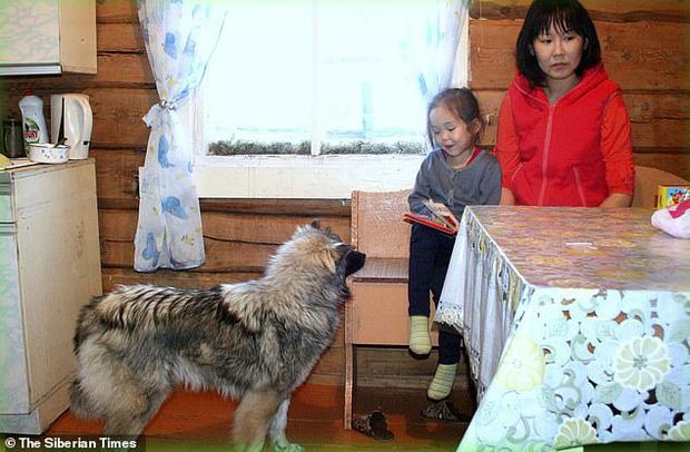 Cuộc sống của cô bé rừng xanh sống sót sau 11 ngày bị lạc trong rừng sâu nhờ chú chó trung thành giờ ra sao? - Ảnh 4.