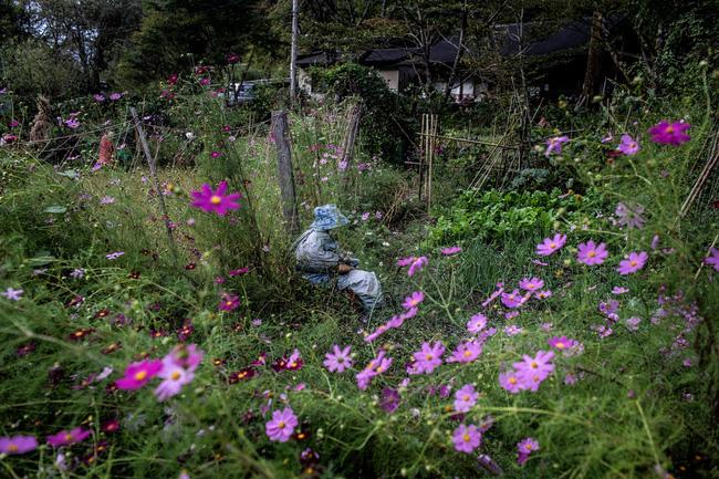 Ngôi làng vắng bóng trẻ thơ tại Nhật Bản: 18 năm không có một đứa trẻ nào ra đời, số búp bê nhiều gấp 10 lần số dân làng - Ảnh 8.