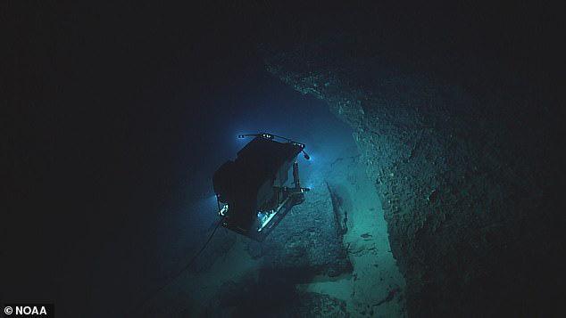 Dùng thiết bị lặn khám phá đáy đại dương tăm tối, tình cờ phát hiện loài cá kì lạ có thể đứng bằng chân - Ảnh 1.