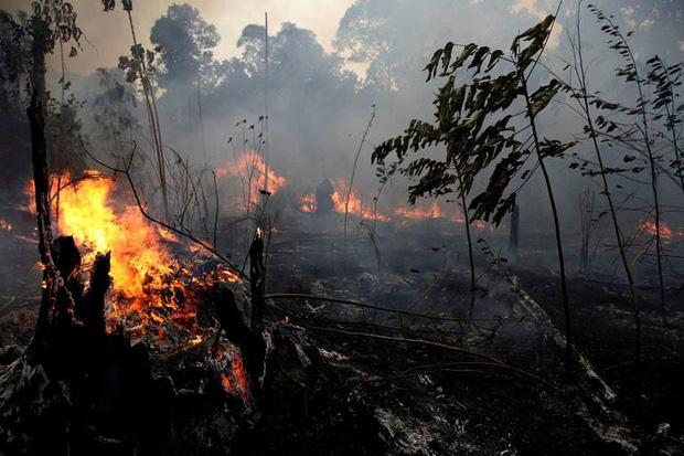 Cháy rừng kỷ lục ở Amazon đã thể hiện hậu quả: Băng ở dãy núi dài nhất thế giới hiện đang tan chảy với tốc độ cực nhanh - Ảnh 1.