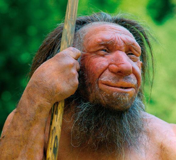 Nguyên nhân nào khiến 8 loài người cổ tuyệt chủng? - Ảnh 1.