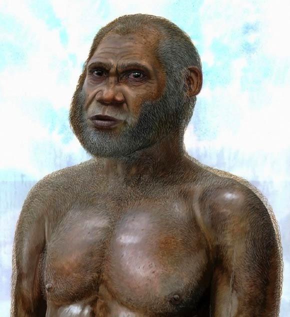 Nguyên nhân nào khiến 8 loài người cổ tuyệt chủng? - Ảnh 2.