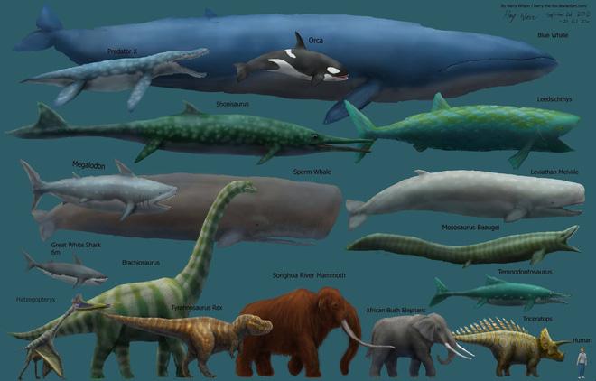 Vì sao động vật tiền sử lại to lớn gấp nhiều lần động vật ngày nay? - Ảnh 3.