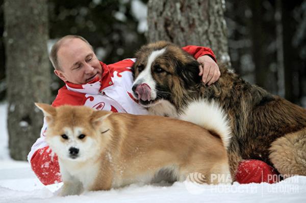 20 năm cầm quyền và những bức ảnh đậm chất Putin - Ảnh 16.