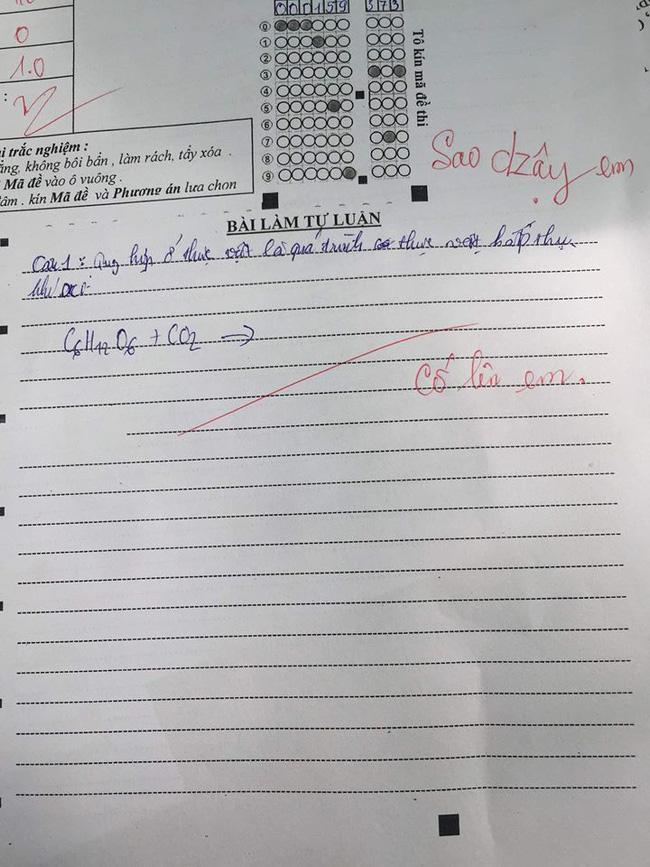 Học sinh để trống bài thi, cô giáo không quát mắng mà thả nhẹ 1 câu động viên, ai đọc cũng sụt sùi - ảnh 1
