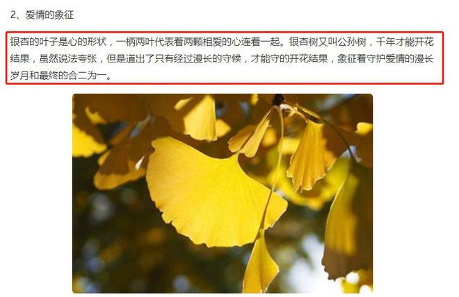 1 tháng sau scandal lộ 3 clip nóng, bài đăng đầu tiên của Lý Tiểu Lộ trên Weibo khiến netizen xôn xao đồn đoán  - Ảnh 3.