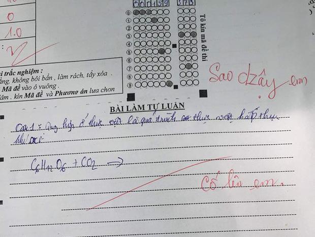 Thấy học trò làm không được bài, cô giáo không nỡ cho điểm kém lại còn để lại lời phê vô cùng ấm áp: Cố lên em - Ảnh 1.